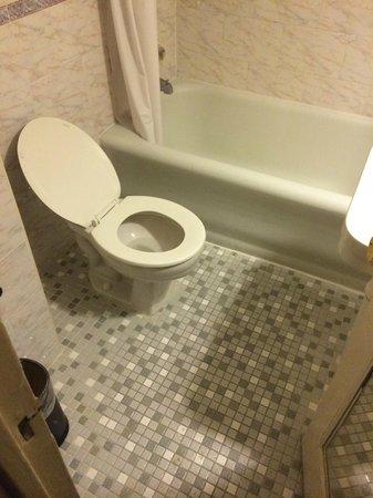 Hotel Carter : bagno (ho omesso il ragno nella vasca appena entrato)