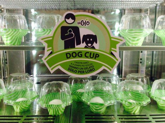 Gelateria Da Gio: il gelato senza zucchero per cani!