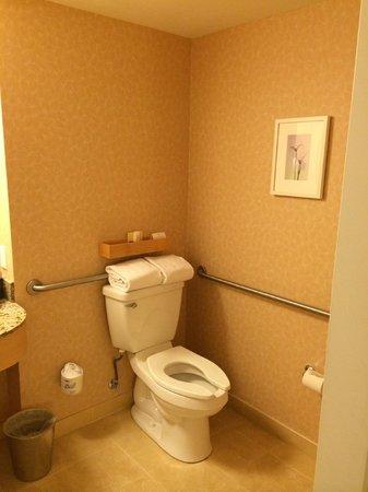 Orchard Garden Hotel: Toilet