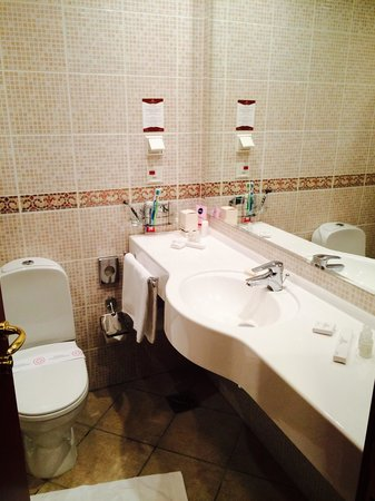 Ring Premier Hotel: Ежедневная замена принадлежностей, санобработка унитаза, большое зеркало)