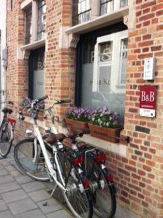 Huis Koning : Outside the B&B