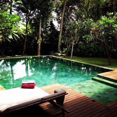 RedDoor Bali: piscina bellissima