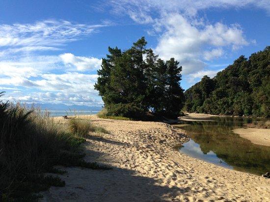 Abel Tasman Coast Track: Apple Tree Bay