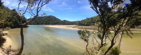 Abel Tasman Coast Track: on the path to Awaroa Bay