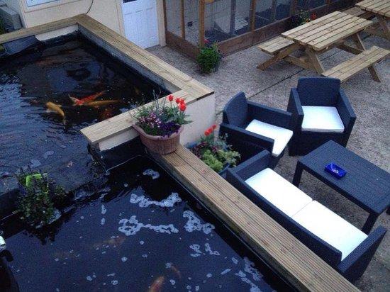 Seashells: ponds