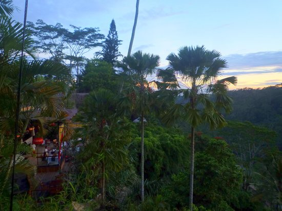 Kupu Kupu Barong Villas and Tree Spa: sunset view from window of my living room on second floor