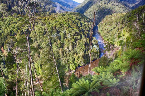 West Coast Wilderness Railway: King River