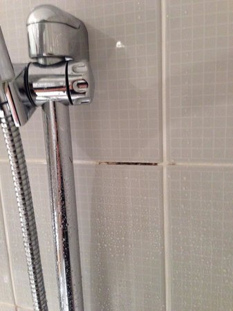 Grand Millennium Auckland: Mold in the shower grouting