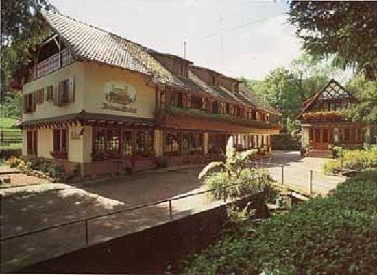 Hotel-Restaurant du Chateau d'Andlau: Esterno