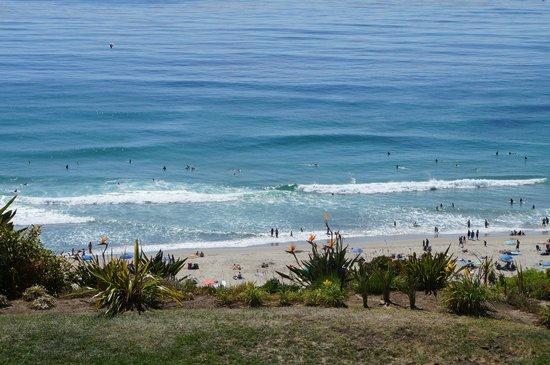 The Ritz-Carlton, Laguna Niguel: Surfers