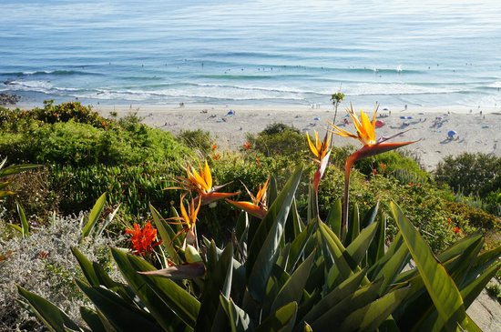 The Ritz-Carlton, Laguna Niguel: View from grassy area just below our ocean front balcony