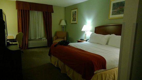 Holiday Inn Express Hotel & Suites Quakertown: king bed