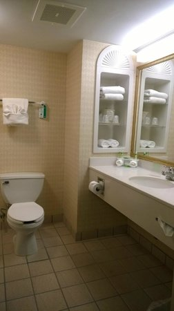 Holiday Inn Express Hotel & Suites Quakertown: nice counter space