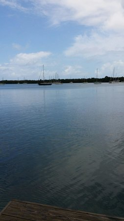 Manatee Eco Resort: Mayo 11 2014