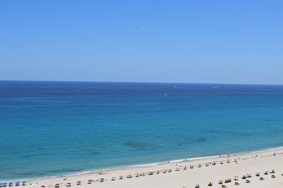 Palm Beach Marriott Singer Island Reviews