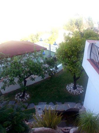 Hostal Casa Mercedes: Solarium, fuente y limoneros