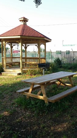 Quality Inn Medical Center Area : Gazebo/Picnic Area