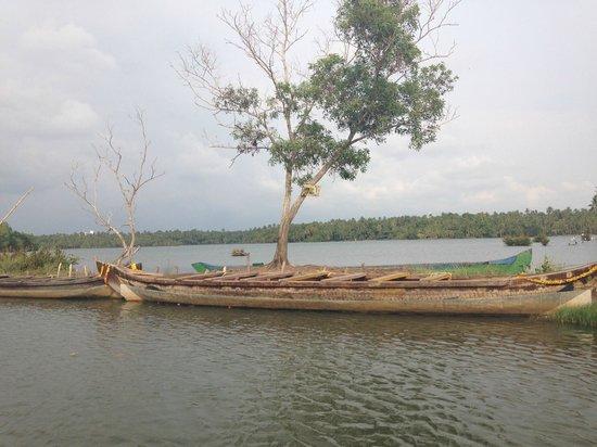 Kadaltheeram Ayurvedic Beach Resort: Backwaterausflug