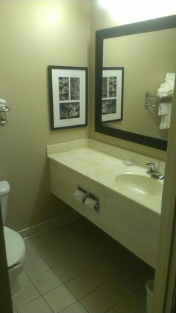 Country Inn & Suites By Carlson, Rochester South, MN : Bathroom