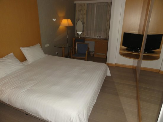 Central Hotel Athens : Quarto