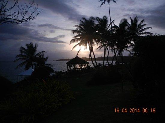 Hosanna Toco Resort: Sunrise