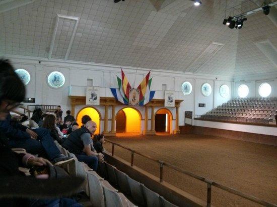 Fundación Real Escuela Andaluza del Arte Ecuestre : Coso