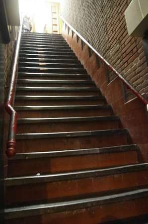 Amigo Budget Hostel : legendary stairs