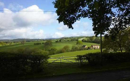 Manor House Farm: view