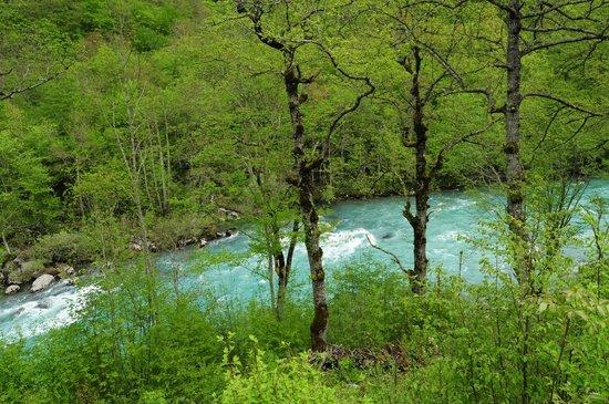Tara River Canyon : Tara river