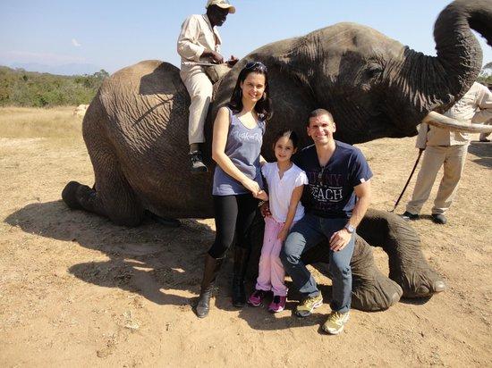 Kapama River Lodge : Interação com elefante