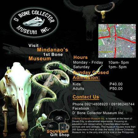 D' Bone Collector Museum: Hours and Rates.