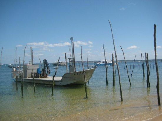 Camping Les Embruns: les bateaux dans le bassin coté Cap ferret