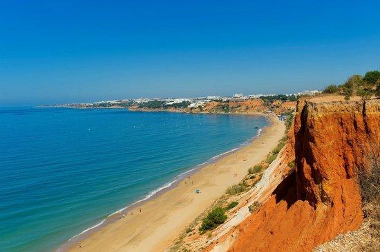Alpinus Algarve Hotel Reviews
