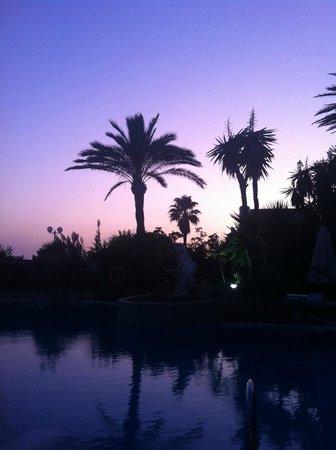 El Oceano Beach Hotel: Night View by the pool!