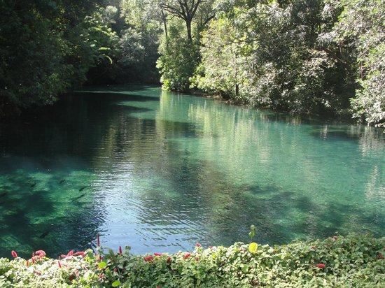 Hot Park: Parque aquático