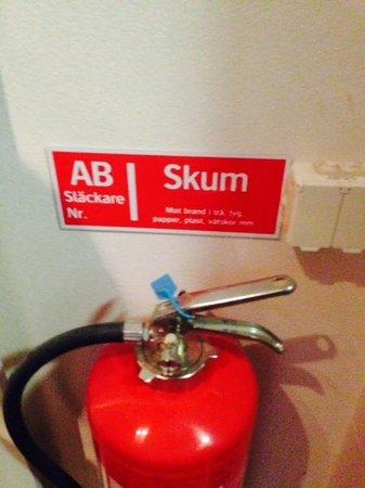 Sheraton Stockholm Hotel : skum