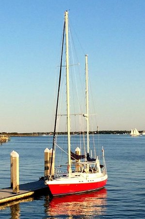 Always For Sail- Day Trips: Always For Sail
