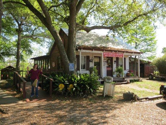 Bayou Cabins : reception