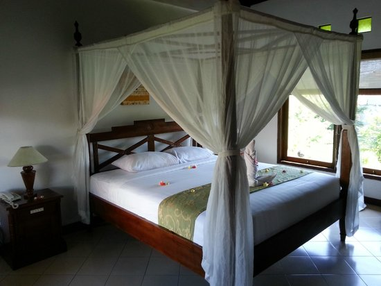 Bali Ayu Hotel : quarto