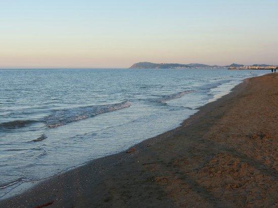 Hotel Maddalena : la spiaggia