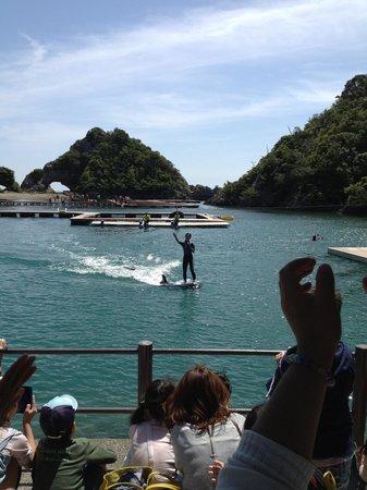 Taiji Whale Museum: くじらに乗るスタッフ