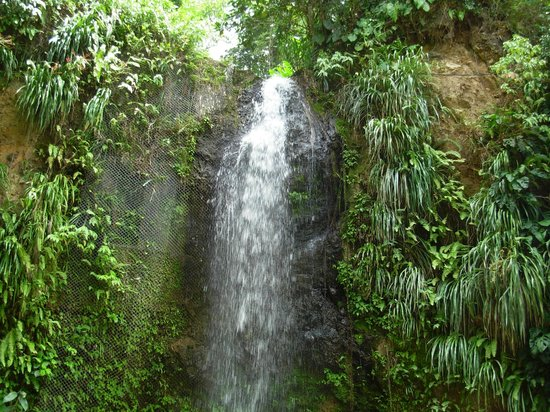 The Landings Resort & Spa St. Lucia: Waterfall tour.