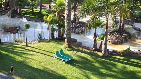 Hotel Riu Palace Oasis: Peace and tranquility in the garden