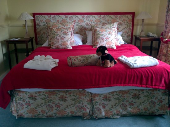 Lake Vyrnwy Hotel & Spa: Our bed and Mervyn the doggie!