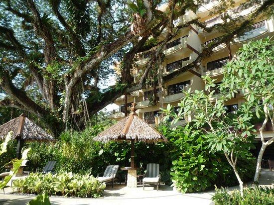 Shangri-La's Rasa Sayang Resort & Spa : The Garden Wing/Pool Area