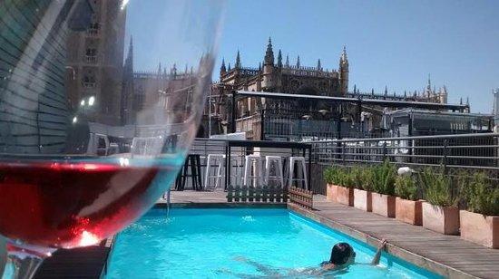 Piscine rose picture of eme catedral hotel seville - Seville hotel piscine ...
