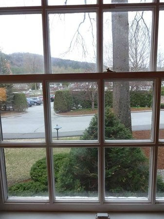 Woodstock Inn and Resort: The View From Our Window