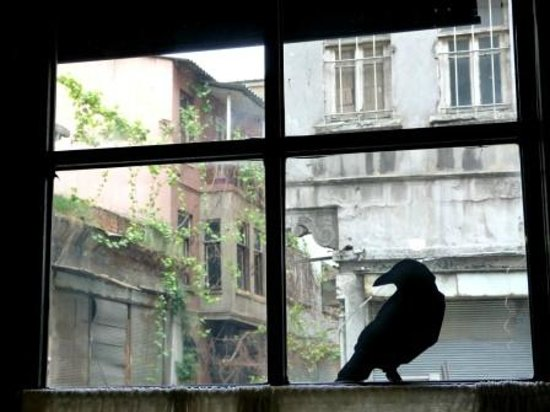 SuB Karakoy: window detail