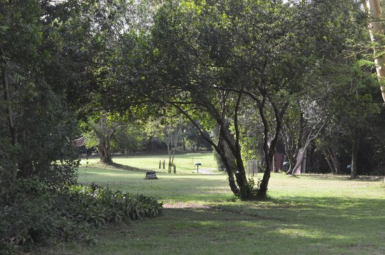 Sarova Mara Game Camp: The Gardens