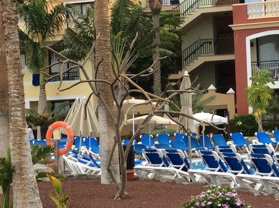 Bahia Principe Costa Adeje : Pool chaise longe